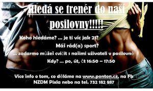 Pixla_dobrovolnik_posilovna
